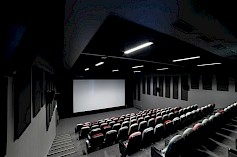 Cinema and conference hall